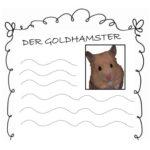 Der Goldhamster