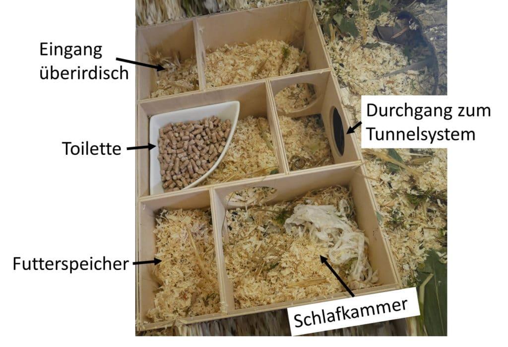 Mehrkammerhaus fuer Hamster